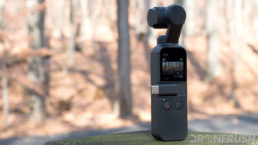 The DJI Osmo Pocket photographed in a forest.